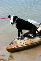 08-05-2017 Canines and Kayaks